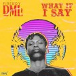 Fireboy DML – What If I Say (Instrumental)