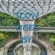 (slow vibes)  SEYI SHAY TYPE BEAT TIWA DAVIDO TYPE BEAT9( ig amfunkysounds)